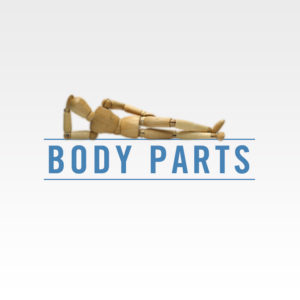 https://deanhawk.com/wp-content/uploads/2019/08/Body-Parts-Square-300x300.jpg